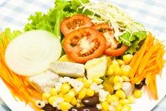 Appetitanregender Salat Lizenzfreie Stockfotos