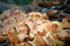 Appetitanregendes Saft shashlik. Lizenzfreies Stockbild