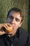 Appetite for apple Royalty Free Stock Photo