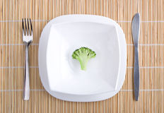 Appetite broccoli. On plate close up Royalty Free Stock Photo