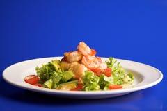 Free Appetizer Stock Photos - 12538353