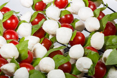 Appetizer. baby mozzarella with cherry tomatoes Stock Image