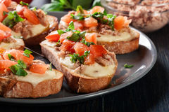 Appetizer bruschetta with tuna, mozarella cheese and tomatoes Royalty Free Stock Photography