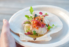 Appetizer ceviche with raw scallop. And sauce Royalty Free Stock Images