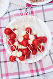 Appetizer of cherry tomatoes and mozzarella. Brochette of pieces of mozzarella and cherry tomatoes on a picnic stock photos