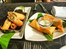 Appetizer chicken spring roll and samosa white plate on table at restaurant. Selective focus. Mock up.  royalty free stock photo