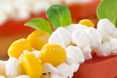 Appetizer, cottage cheese, tomato and valerian Stock Images