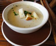 Cream soup with croutons. Appetizer of cream soup with croutons and bits of herbs served on a round white bowl stock photos