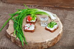 Appetizer with cucumber, radish and tomato. Green onion. A glass. Of vodka. Top view. The concept of food and alcohol Royalty Free Stock Image