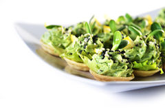 Appetizer with greens Royalty Free Stock Image
