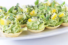 Appetizer with greens Royalty Free Stock Images