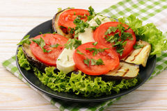 Appetizer - grilled eggplants with mozzarella and tomatoes. royalty free stock photography