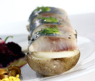 Appetizer with herring Stock Images