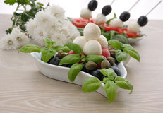 Appetizer of mozzarella Stock Images