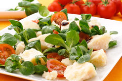 Appetizer with parmesan cheese and vegetables Royalty Free Stock Photography