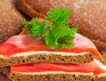 Appetizer with red fish Royalty Free Stock Photos