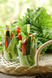 Appetizer salad of fresh vegetables Royalty Free Stock Photos