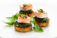 Appetizer with salmon Stock Images
