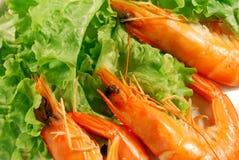 Appetizer of shrimp 001 Stock Photo