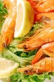 Appetizer of shrimp 009 Stock Photo