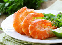 Appetizer of shrimp with herbs Royalty Free Stock Image