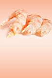 Appetizer shrimps Royalty Free Stock Photography