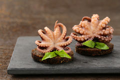 Appetizer small marinated octopus (squid) with basil Stock Photo