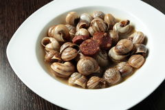 Appetizer of snails in sauce Stock Photos