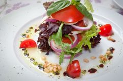 Appetizer of tomato, purple onion and basil . Royalty Free Stock Photo