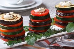 Appetizer of zucchini, tomatoes and aubergines baked with dill. Closeup horizontal Royalty Free Stock Photo
