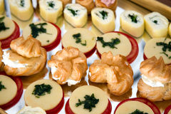 Appetizers. Made with different types of cheese Royalty Free Stock Images