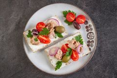 Cracker with tuna spread topping and vegetables. Appetizers with cracke, tuna fish spread topping and vegetables Royalty Free Stock Photography