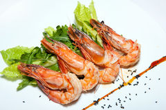 Appetizers, salads, first and second courses, soup Royalty Free Stock Image