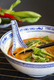 Appetizing Asian Food on White Bowl on Table Stock Photography