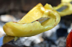 Appetizing baked barbecue vegetables. Stock Image