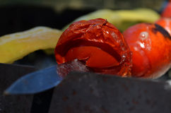 Appetizing baked barbecue vegetables. Stock Photography