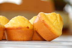 Appetizing bakery Stock Image