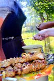 Appetizing barbecue on the fire Stock Image