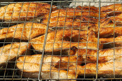 Appetizing barbecue from a red fish royalty free stock photo