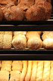 Appetizing bread on showcase. Different appetizing bread on showcase in supermarket Royalty Free Stock Photography