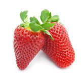 Appetizing brightly red strawberry on a white background. Ripe strawberries on a white background Royalty Free Stock Photo