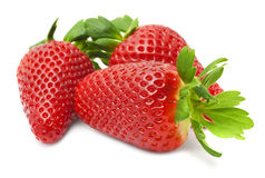 Appetizing brightly red strawberry on a white background. Ripe strawberries on a white background Royalty Free Stock Images