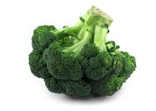 Appetizing broccoli Stock Photography