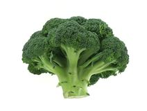 Appetizing broccoli on pure white background Stock Photo