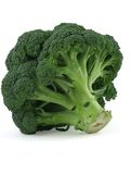 Appetizing broccoli on white background Royalty Free Stock Images