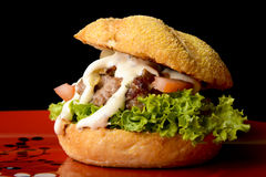 Appetizing burger Stock Images