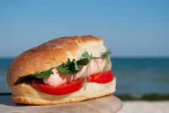 Appetizing burger sandwich on a background of blue sky and blue sea Royalty Free Stock Images