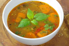 Appetizing cabbage soup Stock Images