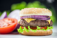 Cheeseburger. Appetizing cheeseburger with red onion closeup stock photography