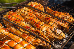 Appetizing chicken legs on the grill. Stock Image